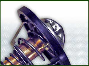 Thermostat and Housing Parts