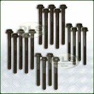 Cylinder Head Bolt Set 300Tdi