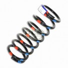 Rear Coil Spring Driver Side Std - Defender 90 Red/Blue